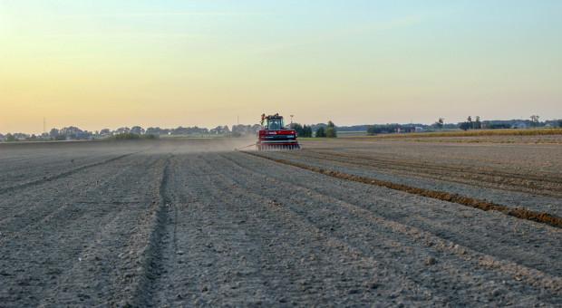 Przedwschodowe odchwaszczanie zbóż