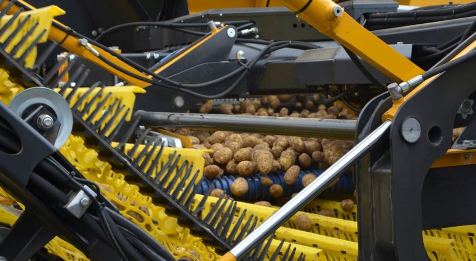 Nowa technologia w uprawie ziemniaka