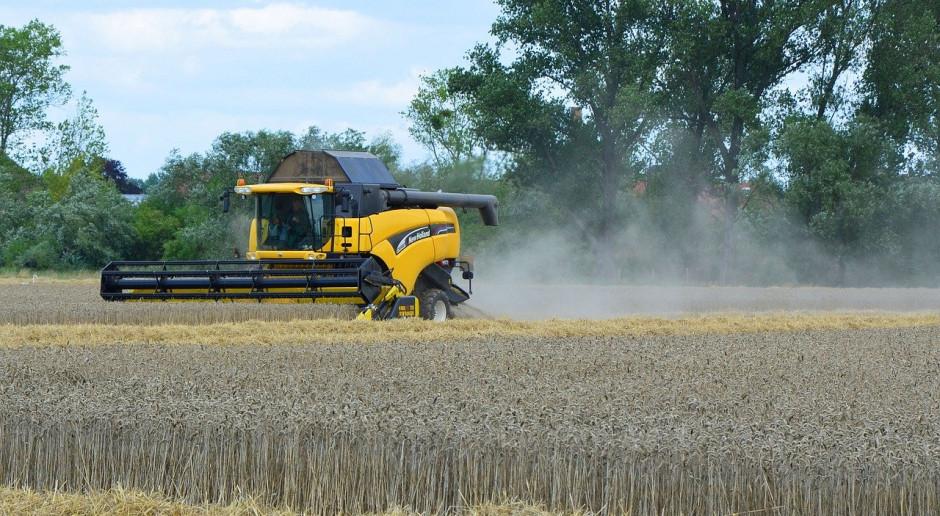 Niemcy: Minister rolnictwa o zbiorach  2020