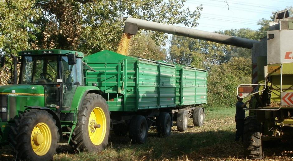 FAO obniżyło prognozę światowej produkcji zbóż w 2020 r.