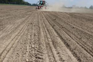 Polski robot w uprawie kukurydzy? Unia ma na to pomysł... i pieniądze