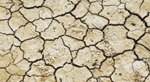 Teledetekcja w monitoringu suszy rolniczej – co nam to da?