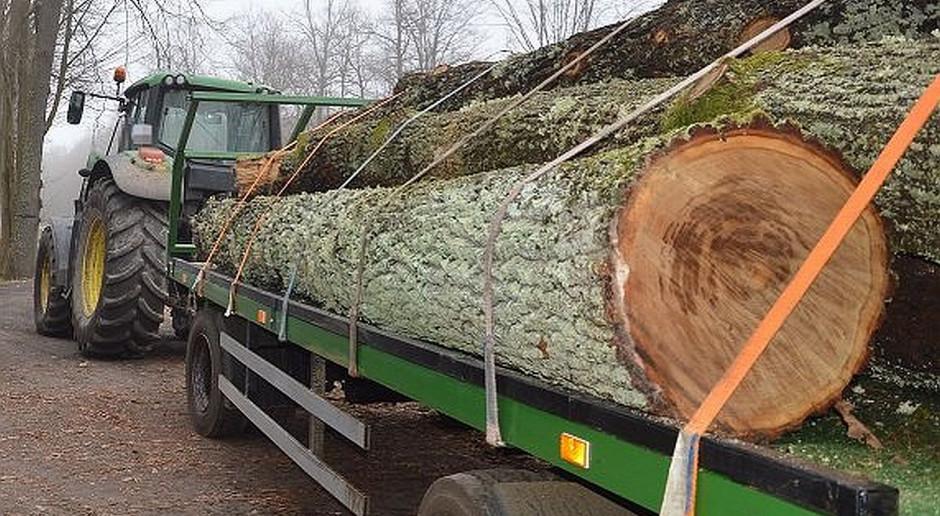 Wypadek podczas transportu drewna