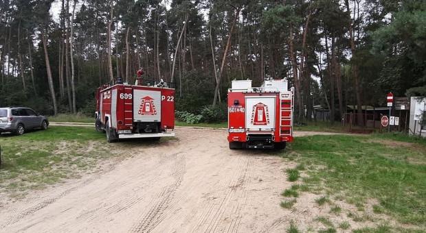 Wielkopolskie: Strażacy ratowali z wody konia, który wystraszył się sarny