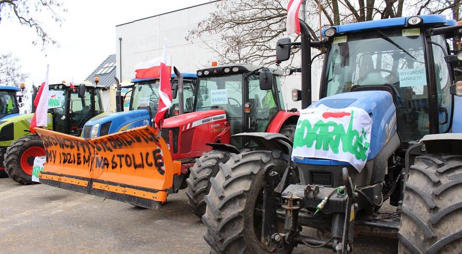 W środę protesty producentów trzody w woj. łódzkim