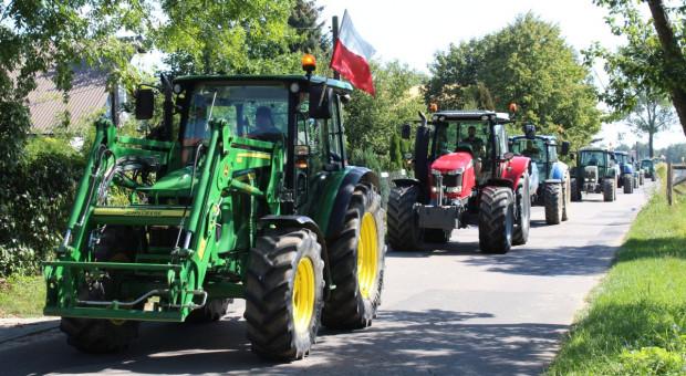 Tak protestowali producenci trzody w Piotrkowie Trybunalskim