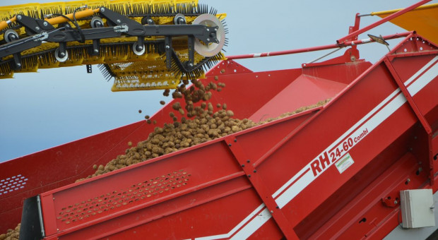 Vademecum ochrony i nawożenia ziemniaka