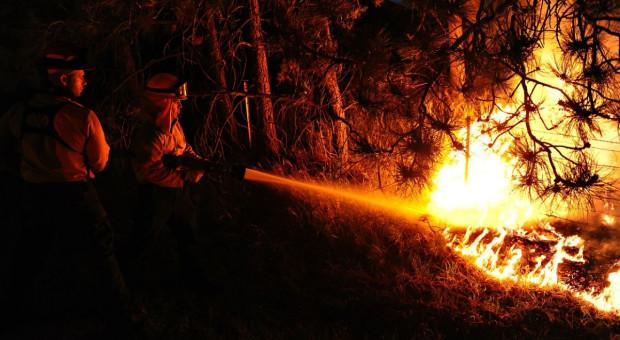 Portugalia: Kilka tysięcy osób ewakuowanych z powodu pożaru lasów
