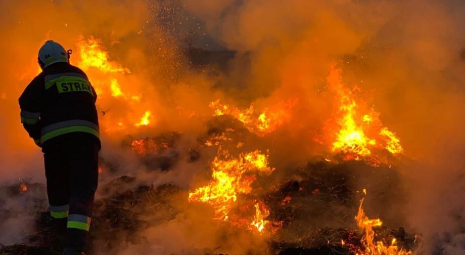 Śląskie: W związku z pożarem w Sosnowcu służby zalecają pozostanie w domach