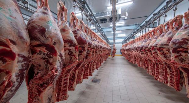Sejmowa komisja za wykreśleniem ograniczeń dot. uboju rytualnego z projektu o ochronie zwierząt