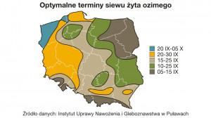 Optymalne terminy siewu żyta ozimego mapa IUNG
