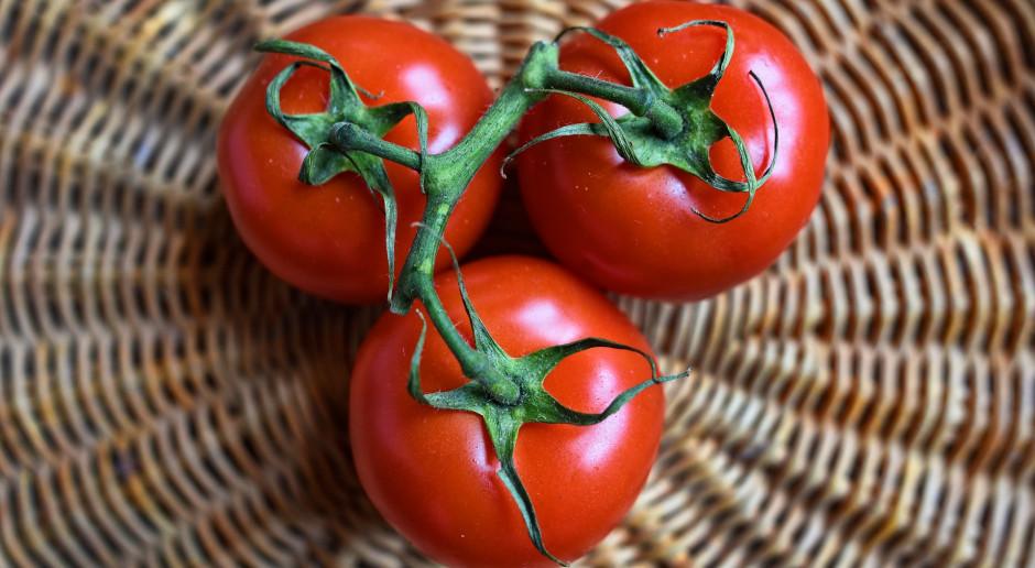 Płatność do pomidorów będzie dodatkowo uwarunkowana