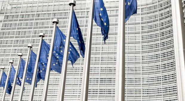 Parlamentarzyści UE krytykują proces zatwierdzania nowych odmian roślin GM