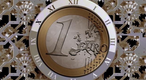 Euro do dopłat droższe niż rok temu