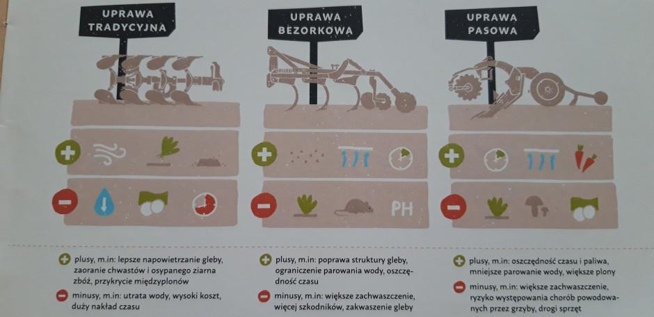 W uprawie roli obserwuje się przechodzenie z uprawy tradycyjnej do systemów bezorkowych.