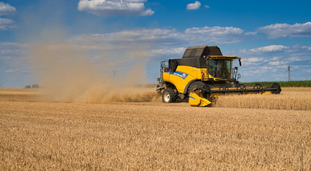 Rosja podnosi szacunki zbiorów zbóż