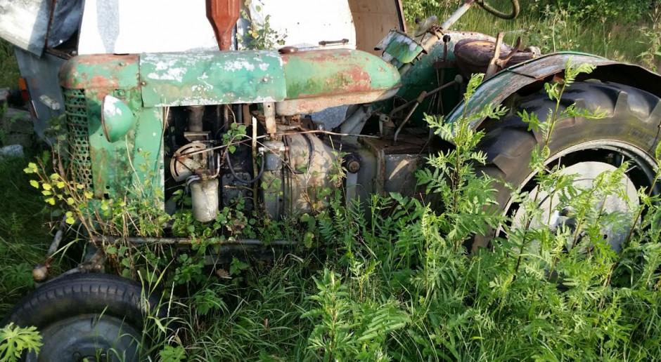 Czy taki traktor warto odrestaurować...?, fot.kh