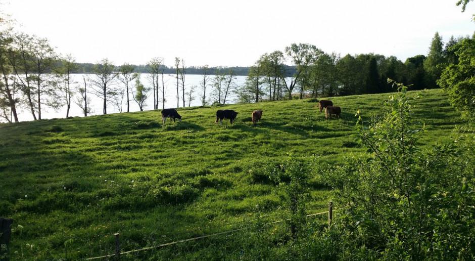 Projekt dot. organizacji hodowli zwierząt do drugiego czytania w Sejmie
