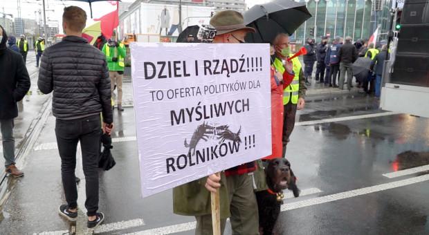 """Myśliwi: ASF i """"piątka Kaczyńskiego"""" to dwie największe bolączki polskiej wsi"""