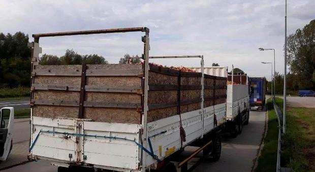 Za ciężkie transporty jabłek