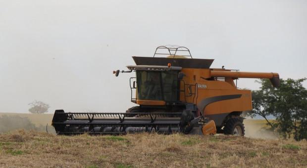 Kampania zbioru zbóż w Rosji została zakończona w 95 proc.