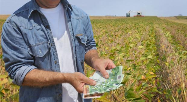 We Francji w 2019 r. ponownie spadły dochody gospodarstw rolnych
