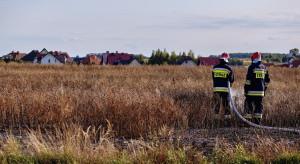 Strażacy z OSP z co najmniej 400-złotowym dodatkiem do emerytury?