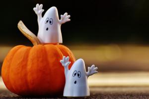 Co możemy zrobić z dynią, kiedy już Halloween się skończy?