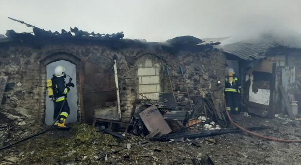 Płonęła obora z bydłem i stodoła