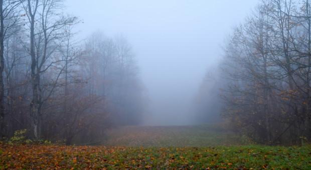 IMGW ostrzegł przed gęstą mgłą w dwóch województwach