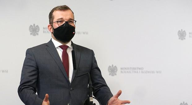 MRiRW: Minister polecił przebadania norek w woj. pomorskim