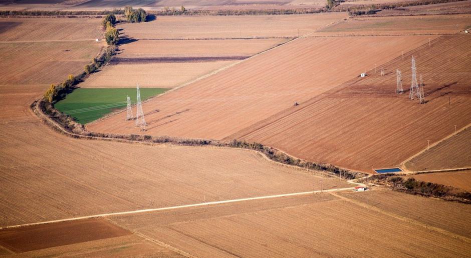 Każdy niemiecki rolnik produkuje  dziś żywność dla 140 osób