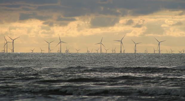 Wielka Brytania chce być bardziej ekologiczna