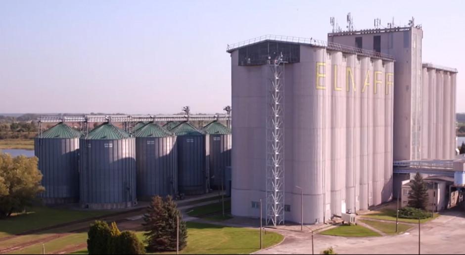 865 zł za tonę pszenicy na Giełdowym Rynku Rolnym
