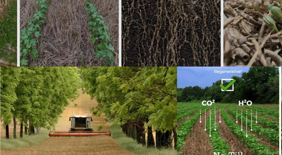 Rolnictwo regeneratywne – moda, potrzeba czy konieczność?