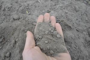 Konsultacje unijne - Nowa strategia glebowa