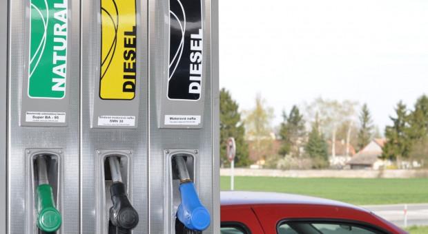 Biopaliwa a Europejski Zielony Ład