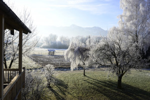 Przy umiarkowanych temperaturach możesz kontynuować koszenie trawnika przez całą jesień. Dzięki odpowiedniej pielęgnacji i utrzymaniu równomiernej wysokości trawy, trawnik będzie powoli rósł także zimą – pod warunkiem, że temperatura nie spadnie poniżej 4°C, fot. 6617564 z Pixabay