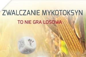 Badanie zbiorów zbóż 2020: pszenica, Polska