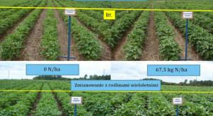 Rolnictwo regeneratywne na świecie: Floryda