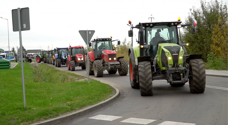 Niemieccy rolnicy protestują z powodu niskich cen mleka i wieprzowiny