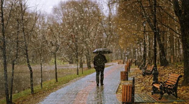 Gliwice rozpoczynają program dotacji do łapania deszczówki