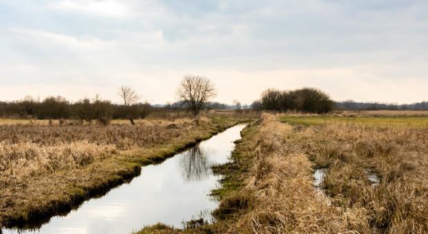 Nabór wniosków dot. inwestycji w obszarach Natura 2000 do 30 grudnia