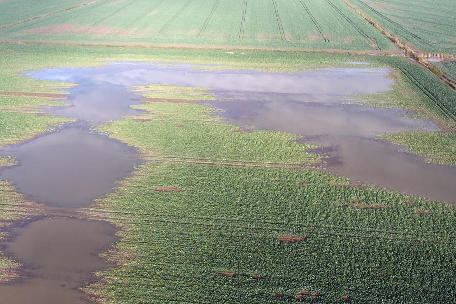 Zdjęcie z drona z widocznymi zastoiskami wodnymi.Fot. Dawid Chwirot