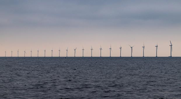 Sejm o farmach wiatrowych i zmianach w kodeksach