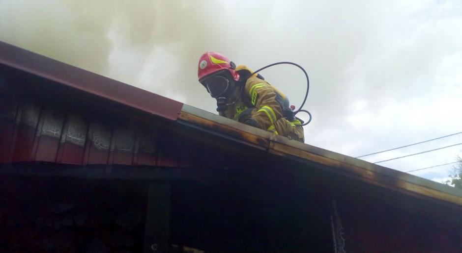 Strażacy gasili pożar w Wieltonie