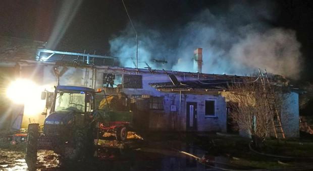Pożar w gospodarstwie. Płonęła chlewnia, stodoła i dom