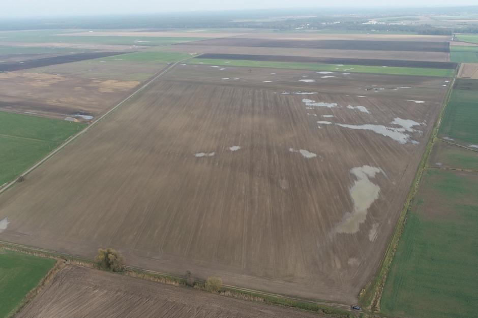 Zdjęcie z drona z zastoiskami w rzepaku Fot. Dawid Chwirot