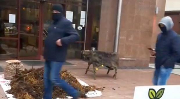Rolnicze protesty na Podlasiu, Mazowszu, Lubelszczyźnie i na Kujawach (Aktualizacja)