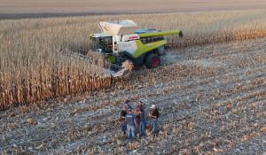 Claas Lexion 8600TT w trakcie bicia rekordu zbiory kukurydzy na ziarno. fot. mat. prasowe